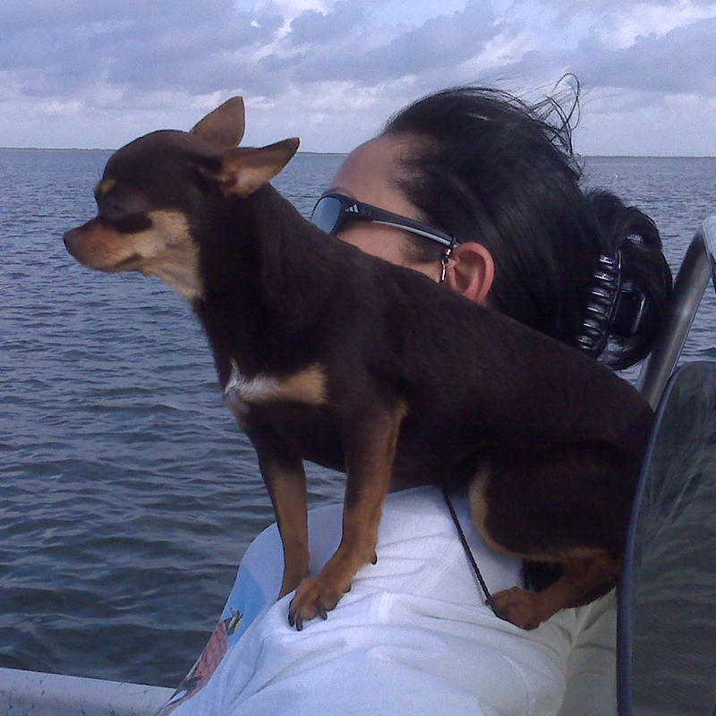 Coco, now she thinks she's a Parrot