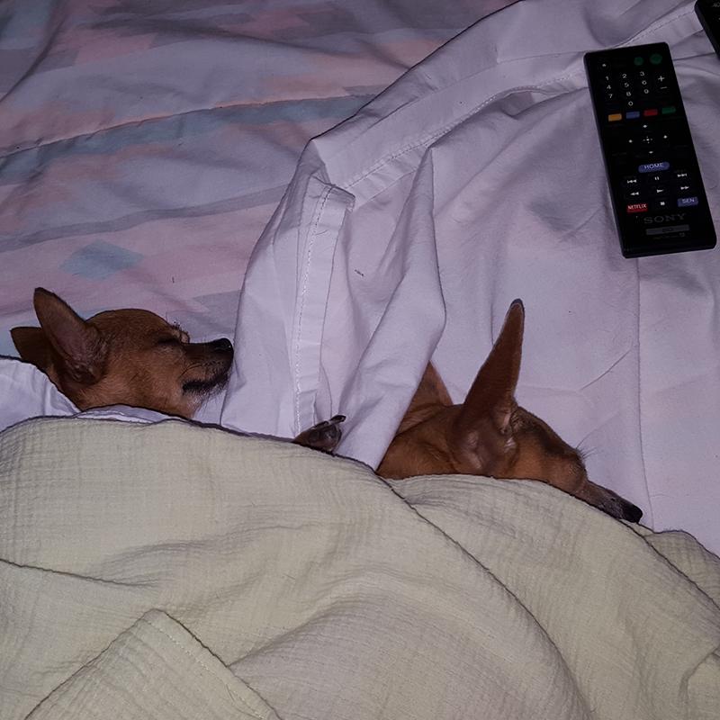 "Chibi & Mika now ""Movie, what Movie?"""
